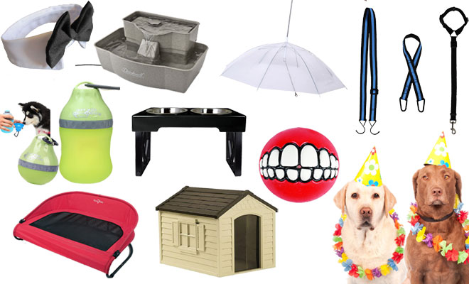 9 Christmas Gift Ideas for Your Doggy
